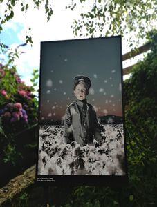 festival-photo-helena-blomqvist-photo