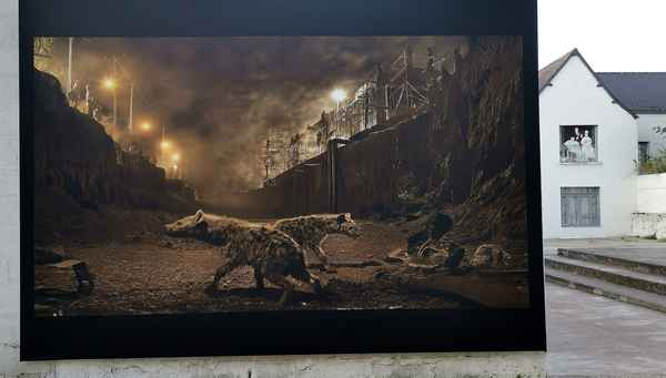 photo-festival-nick-brandt-river-bed-with-hyenas