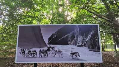 photo-festival-ragnar-axelsson-sled-dogs